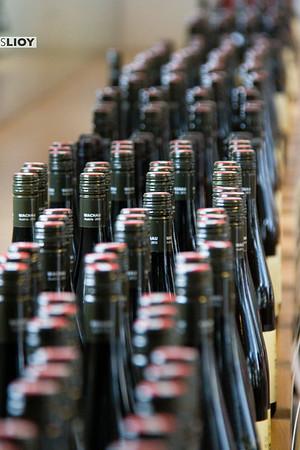 domane wachau wines