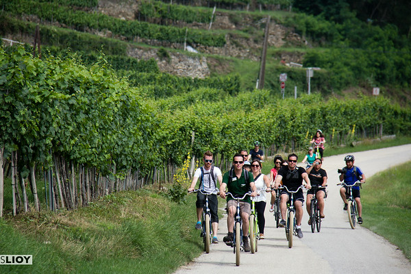 austria's wachau valley bike tour