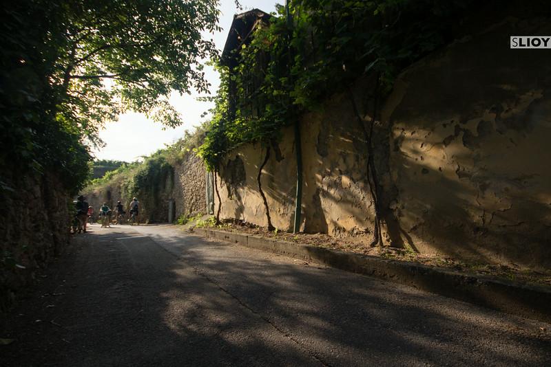 sun dappled path on the way to krems