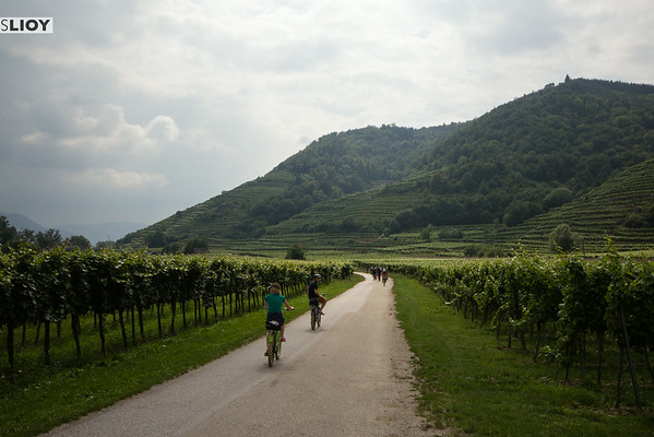 biking austria's wachau valley