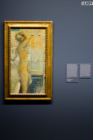 Bonnard's 'Gray Nude in Profile' at the Albertina Wien.