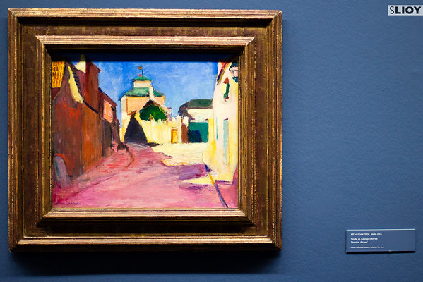 Matisse in the Albertina Museum in Vienna.