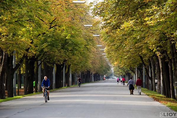 vienna prater park road