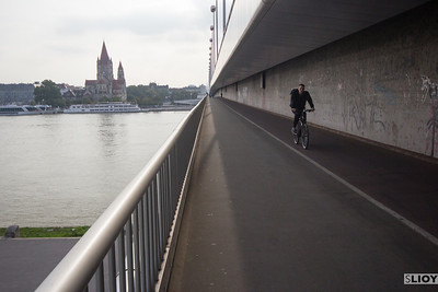 biking over the danube in vienna