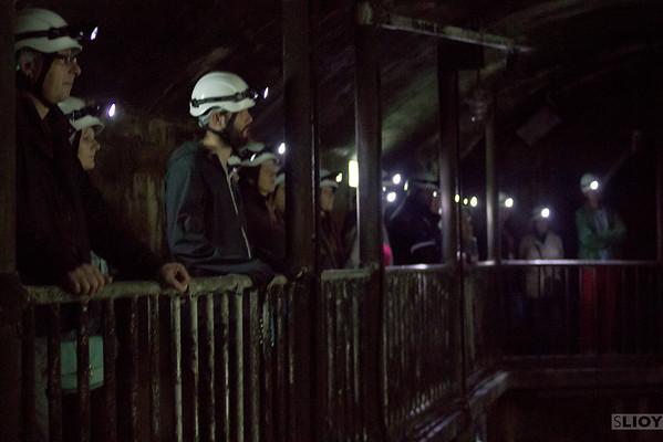 vienna third man sewers tour