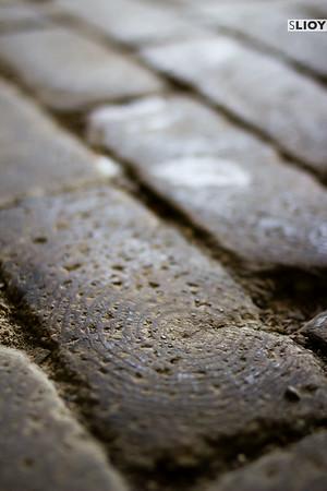 wooden paving stones at klosterneuburg