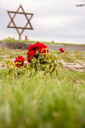terezin memorial cemetery