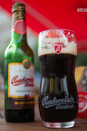 czech beer budvar