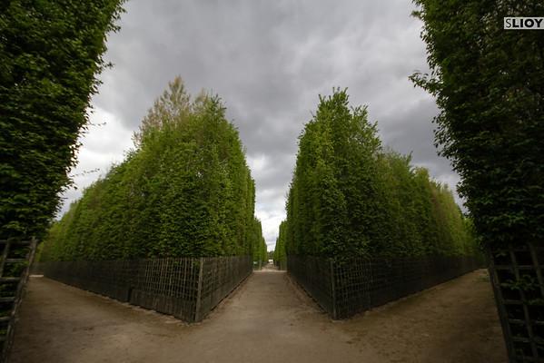 versailles gardens girandolve grove