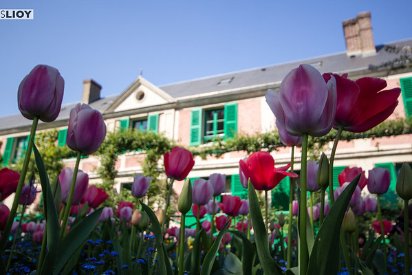Monet's house and garden in Giverny