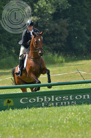 CobblestoneK2014-7459