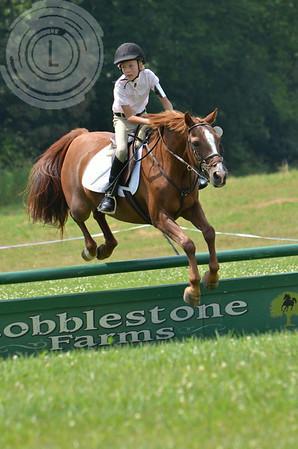 CobblestoneK2014-7427