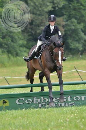 CobblestoneK2014-7607