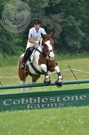 CobblestoneK2014-7571