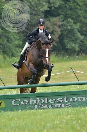CobblestoneK2014-7606