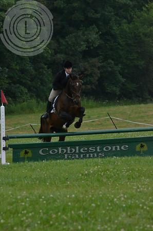 CobblestoneK2014-7731