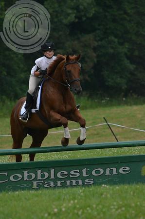 CobblestoneK2014-7707