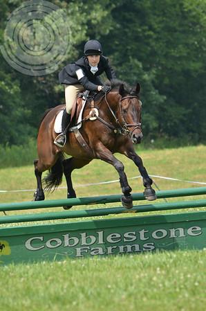 CobblestoneK2014-6900