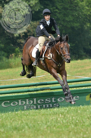 CobblestoneK2014-6901