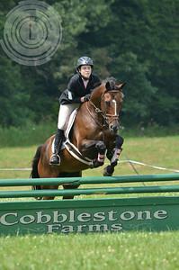 CobblestoneK2014-7048