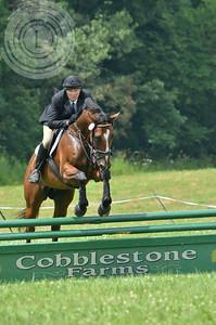 CobblestoneK2014-7040
