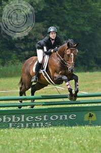 CobblestoneK2014-7049