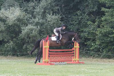 Cobblestone2014-1263