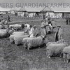 Royal Lancs show Newcastle 1935