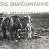 Man ploughing with horse and ox, picture taken from magic lantern slide.