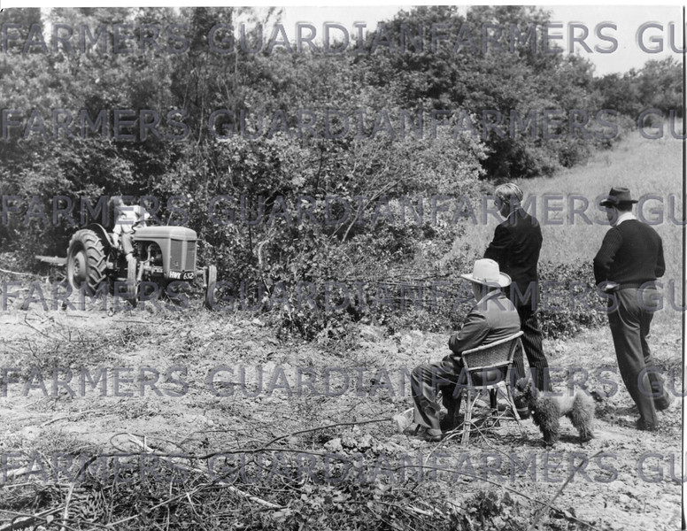 A Feguson TE 20 tractor working at Chartwell, watched by left to right Winston Churchill, Anthony Eden and Christopher Soames.