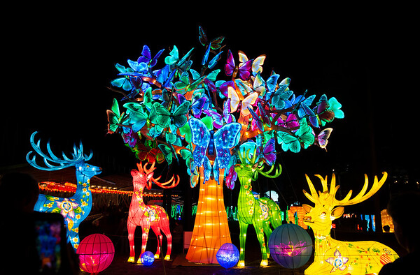 20200112 Chinese Lantern Festival 007Ed
