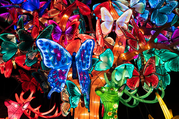 20200112 Chinese Lantern Festival 019Ed