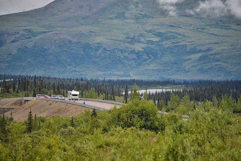 July 19, 2013: Sadler's Alaska Challenge Stage Five from Milepost 211 to Milepost 183. A group of handcyclists race on the Parks Highway during stage five.
