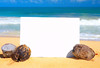 A blank advertising board supported by coconuts on a gorgeous beach in Hawaii