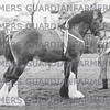 1953 three year old Dallas Invader