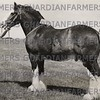 E & J Newhouse, Anfield Pioneer, champion heavy horse at North Lonsdale