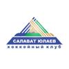 Салават Юлаев Уфа, хоккейная команда, логотип