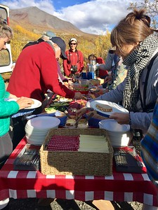 Picnic lunch on the way to Camp Denali