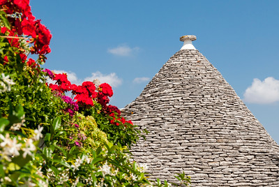 Conical Trullo Roof with Flowers, Alberobello Trulli District, Puglia, Italy