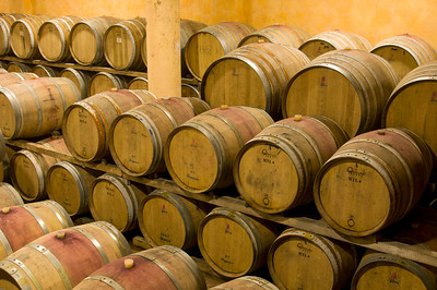 Wine Aging in Oak Barrels, Tuscany, Italy