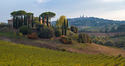 Landscape with Vineyard and Agritourism Farm near San Gimignano in Tuscany (Toscana), Italy