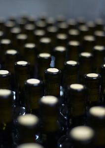 Wine Bottles at Fatalone Winery near Gioia del Colle, Puglia, Italy