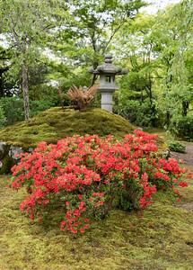 Zen garden of Tenryuji (Tenryu Shiseizen-ji) Buddhist temple, Kyoto, Japan