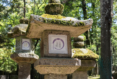 Toro (stone lanterns) along the path to Kasuga Taisha Shrine in Nara, Japan