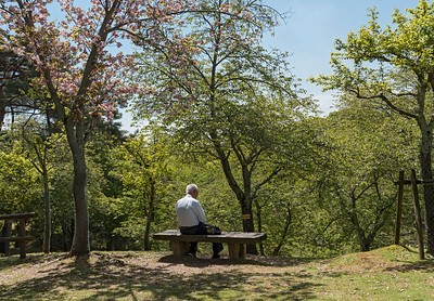 Man on bench, Nara