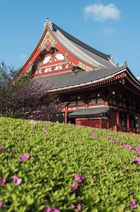 Senso-ji, Asakusa, Tokyo