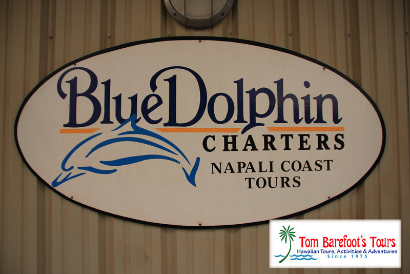 "<a href=""http://www.tombarefootshawaiitoursactivities.com/product.php?id=1604&name=Na_Pali_Sunset_DC_4_Hour"">Blue Dolphin Charters, Napali Sunset Sail.</a>"