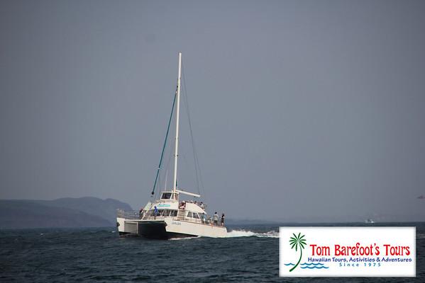 Kauai Sea Tours, Napali Sunset Cruise