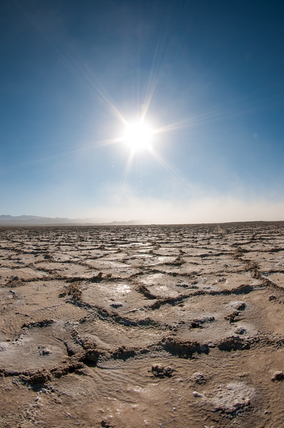 Nevada-154