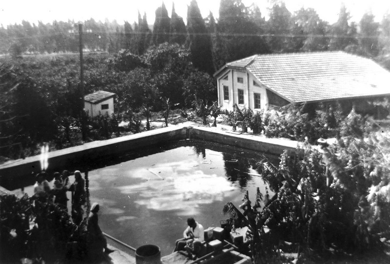 Watering Pool and the Packing Building